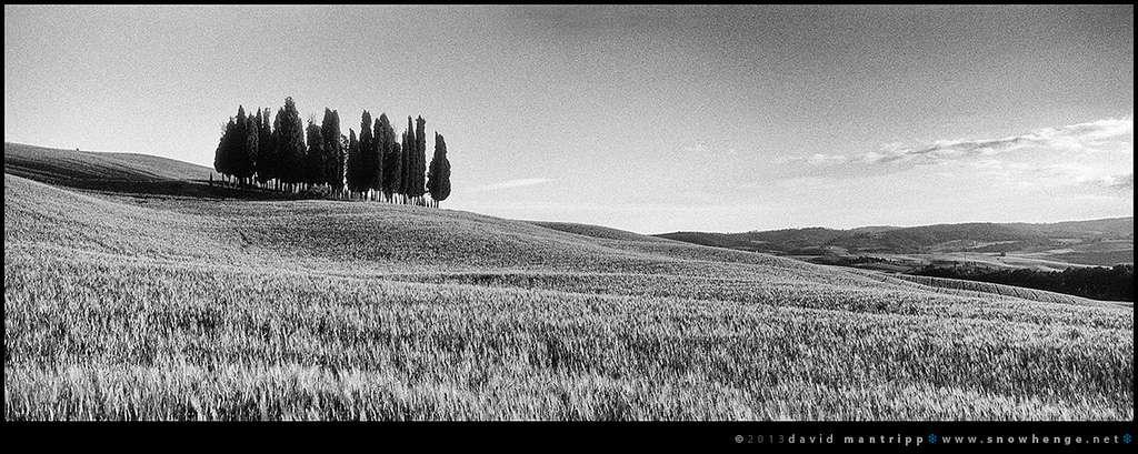 film-sreet-photography-2