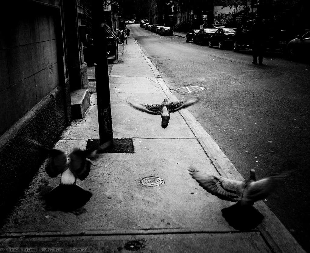 Olympus-OMD-EM1-Street Photography-8