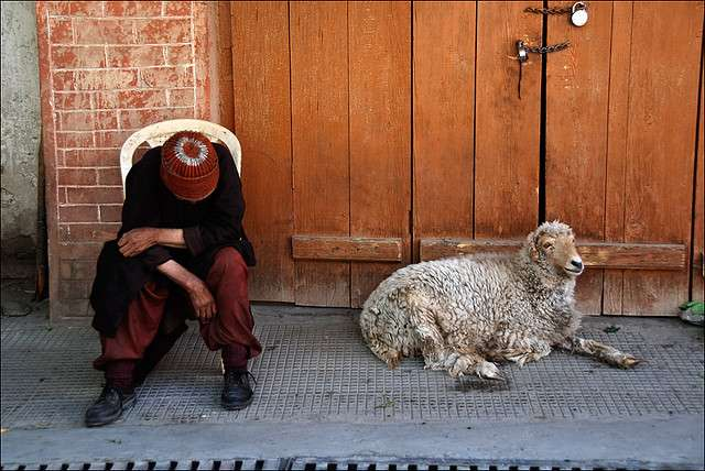 Zanskar-India-Photography-8