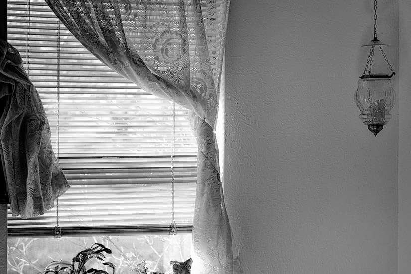 mundane-photography-7