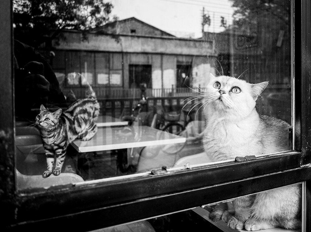 beijing street photography 8