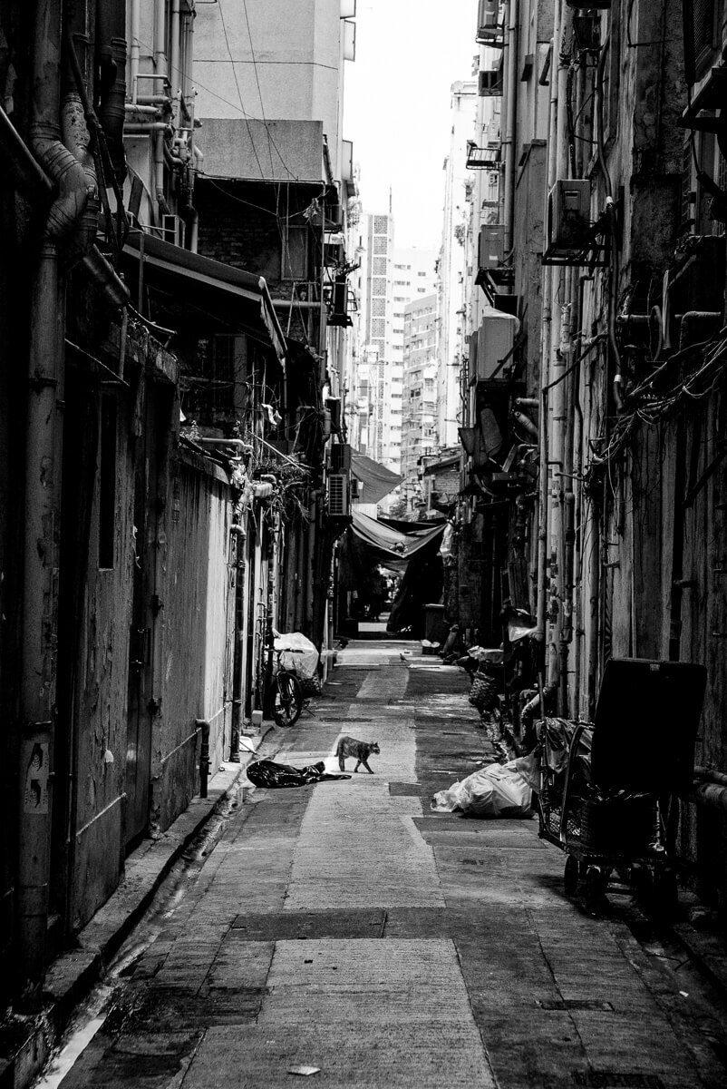hong kong street photography 3
