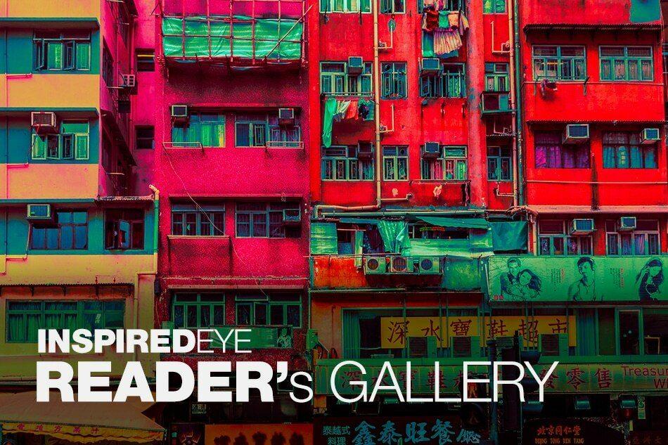 readers gallery again