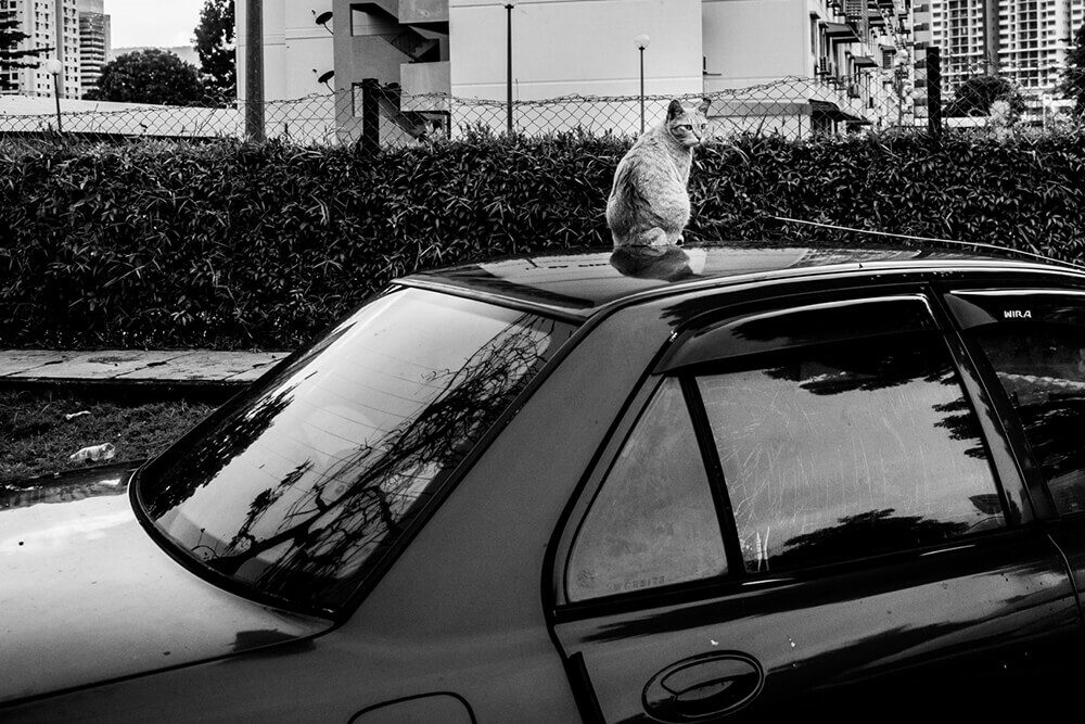 penang street photography 18